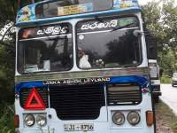 Ashok Leyland Viking 2004 Bus - Riyahub.lk