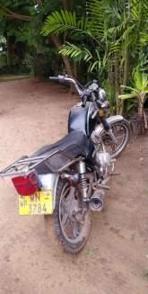 Suzuki GN 125 2011 Motorcycle - Riyahub.lk