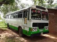Ashok Leyland Viking 2001 Bus for sale in Sri Lanka, Ashok Leyland Viking 2001 Bus price