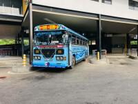 Ashok Leyland Viking 2014 Bus for sale in Sri Lanka, Ashok Leyland Viking 2014 Bus price