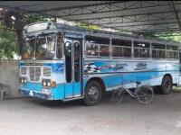 Ashok Leyland Viking 2015 Bus for sale in Sri Lanka, Ashok Leyland Viking 2015 Bus price