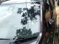 Suzuki Wagon R Stingray 2019 Car for sale in Sri Lanka, Suzuki Wagon R Stingray 2019 Car price