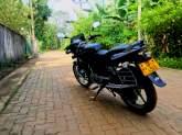 Bajaj Pulser 2010 Motorcycle - Riyahub.lk