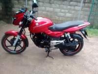 Bajaj Pulsar 180 2008 Motorcycle - Riyahub.lk
